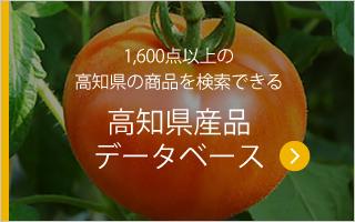 1,600点以上の高知県の商品を検索できる高知県産品データベース