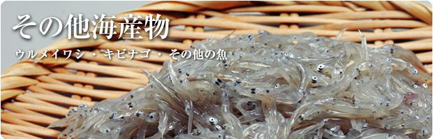 その他海産物。ウルメイワシ・キビナゴ・その他の魚