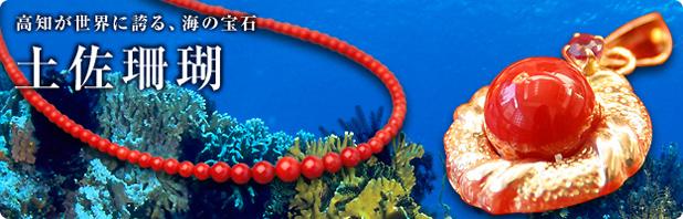 高知が世界の誇る、海の宝石。土佐珊瑚
