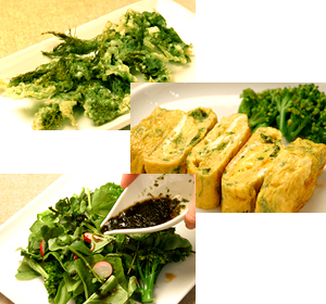 青のりの天ぷら・卵焼き・サラダドレッシング