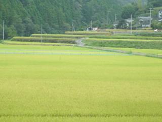富山地区風景