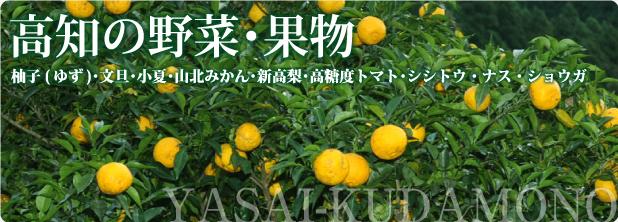 高知の野菜・果物