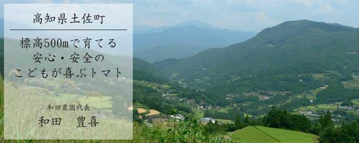 標高500mで育てる安心・安全のこどもが喜ぶトマト/和田農園