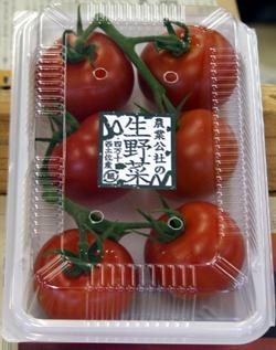 トマトパック詰め