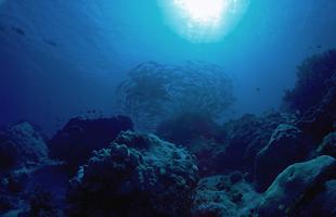 室戸海洋深層水