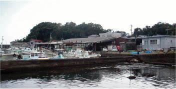 田野浦漁港